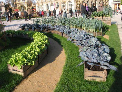 Jardin ephemere crée par les jardiniers de la ville de Nancy tous les ans au mois d'octobre.