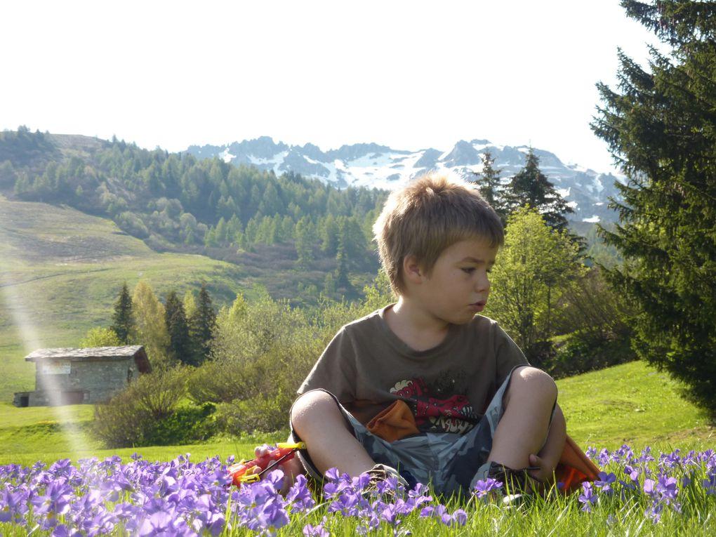 Un clin d'oeil sur les Alpes de la Vanoise à l'attention de nos amis Niomounois.