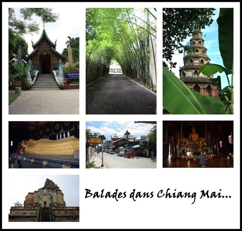 Album - road trip in thaïland