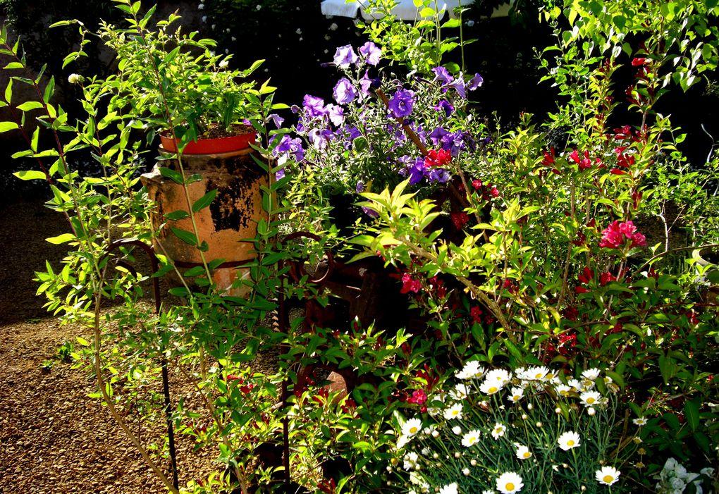 Nos fleurs, nos amours...
