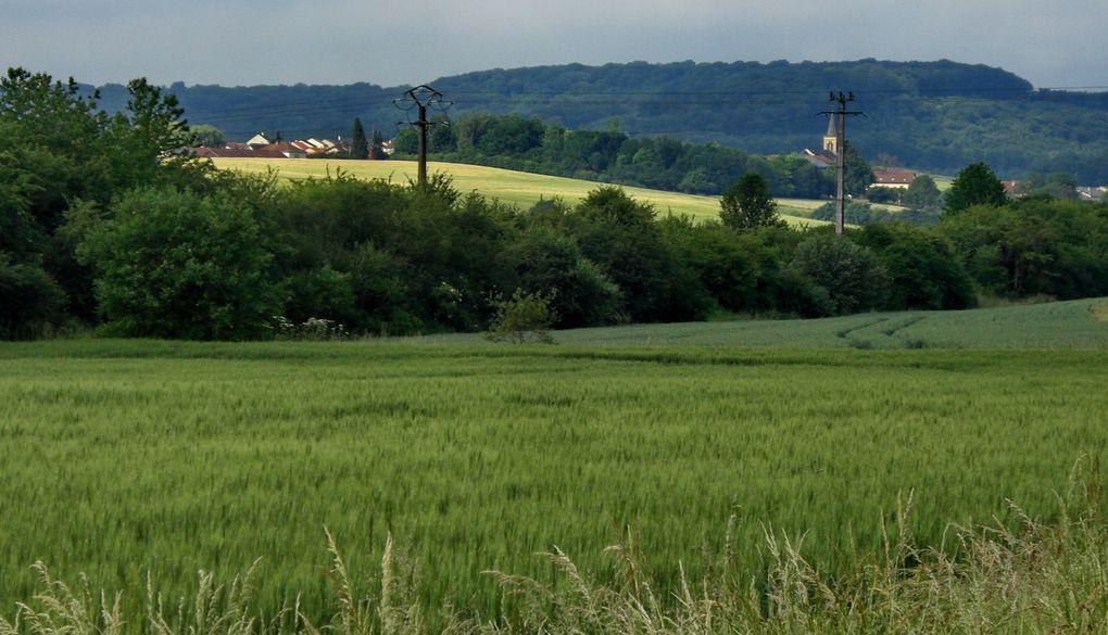 Billy le Flamand a visité le bas du village de Hestroff, son stade, son boulodrome...