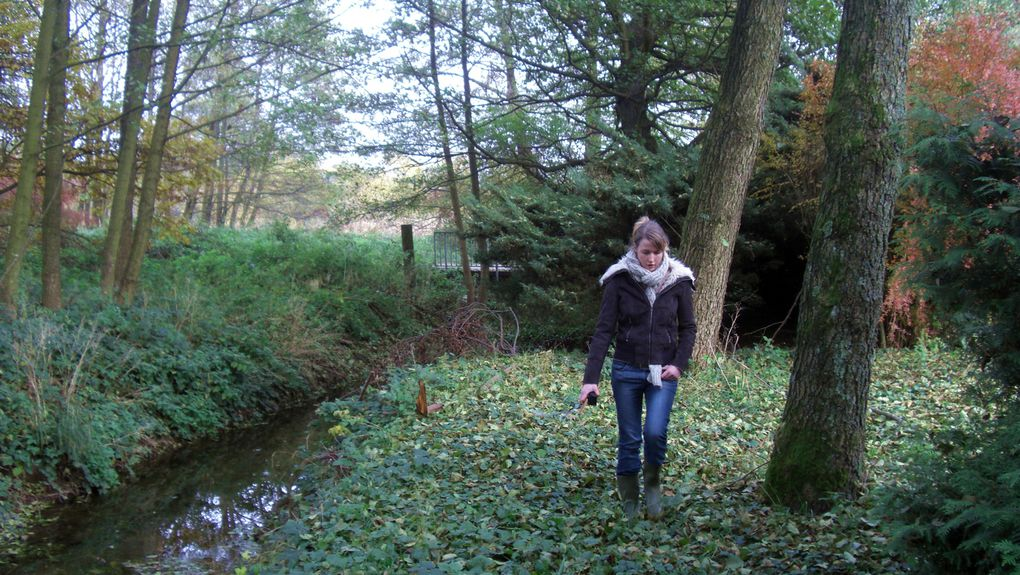 Promenade aux confins de Hestroff, Ebersviller, Férange, Hobling