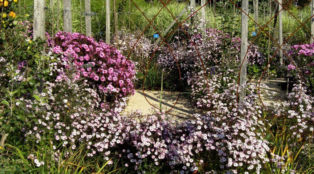 Ce jardin appartient au Conseil Régional de la Lorraine. Il se veut ainsi être une vitrine de ce qui se fait de mieux chez nous... Appartient au groupe transfrontalier des Jardins sans Limites...