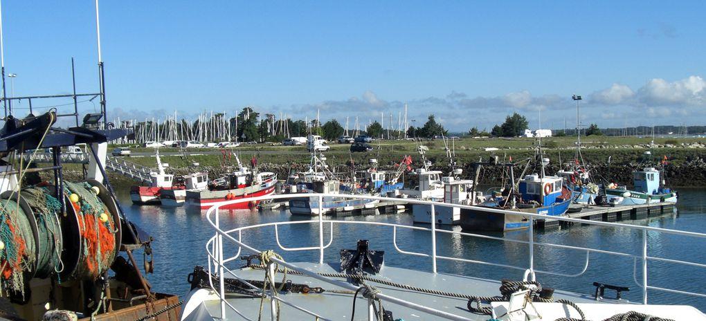 Découverte du port de pêche de Loctudy un lundi matin...