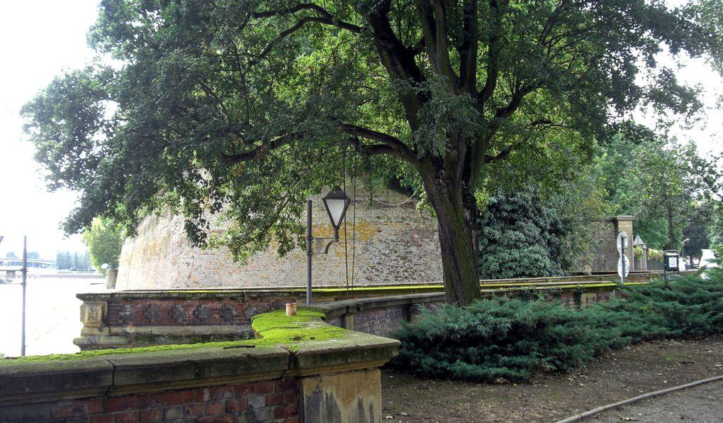 Thionville, française depuis 1661, appartenait aux Pays-Bas espagnols. Sur les traces de sa vie médiévale.