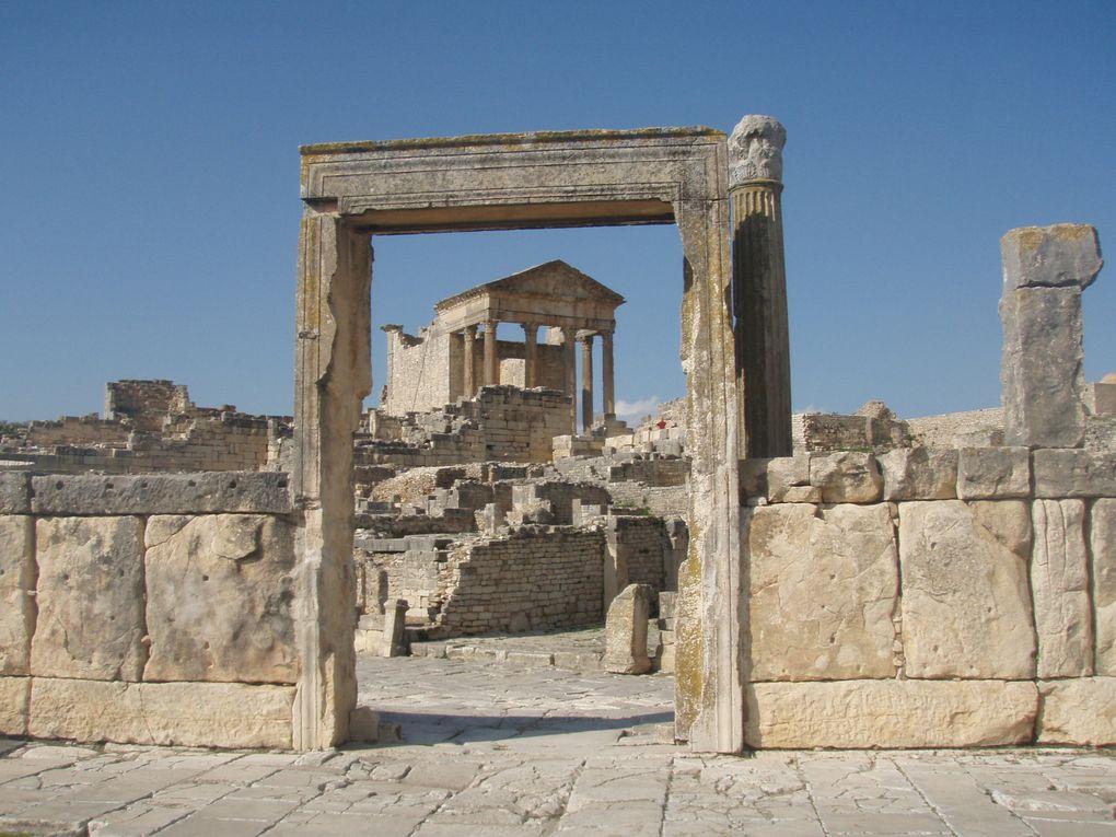 Sites archéo. de Thuburbo Majus, Dougga, El Jem, Carthage.