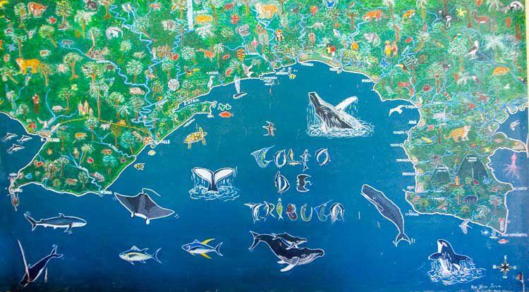 Album - Pazifikkueste