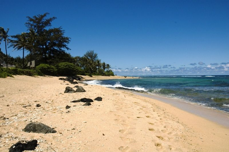 Album - 81 - Hawaii - Ile-de-Kaui