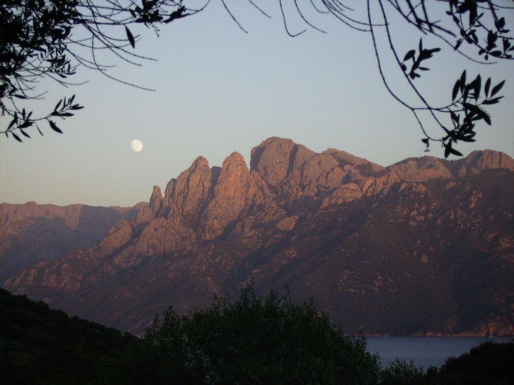 Album - Corsica