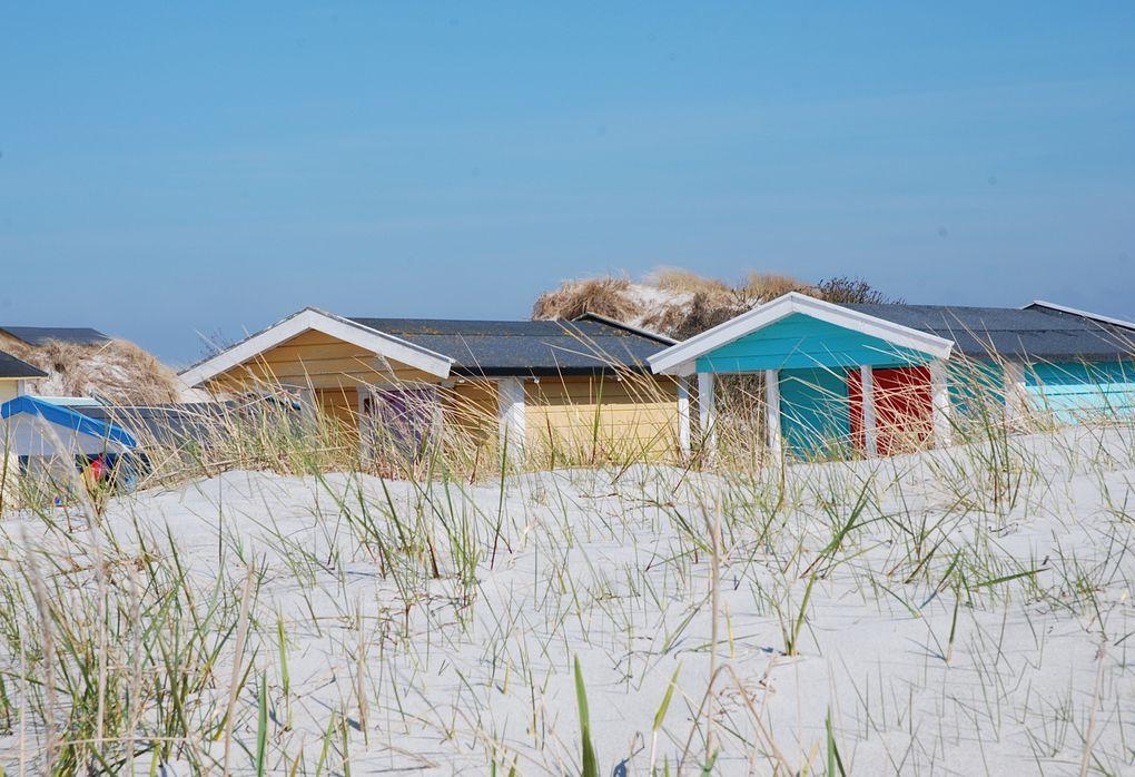 Album - Suède, la plage, l'hiver