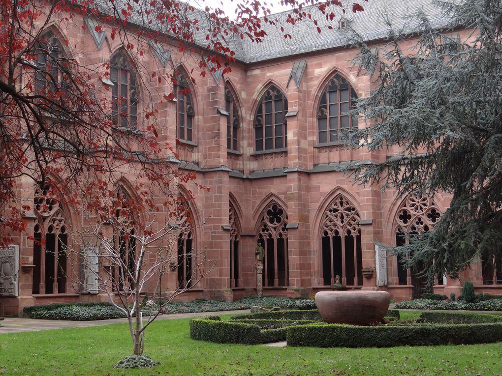 Le 24ème échange avec la Marienschule: visite de Limburg, la Haus der Geschichte à Bonn, le musée Gutenberg et la cathédrale de Mayence