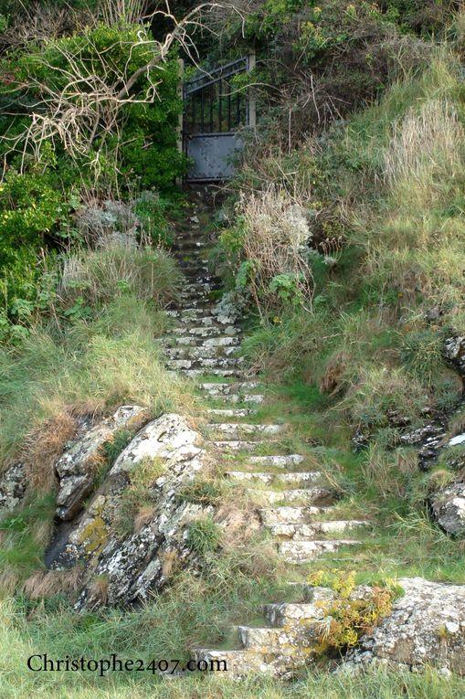 Album - Escaliers