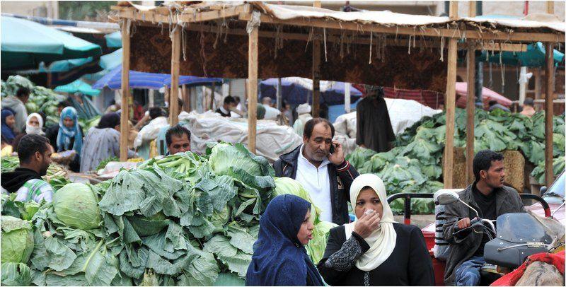 Album - Egypte-2011