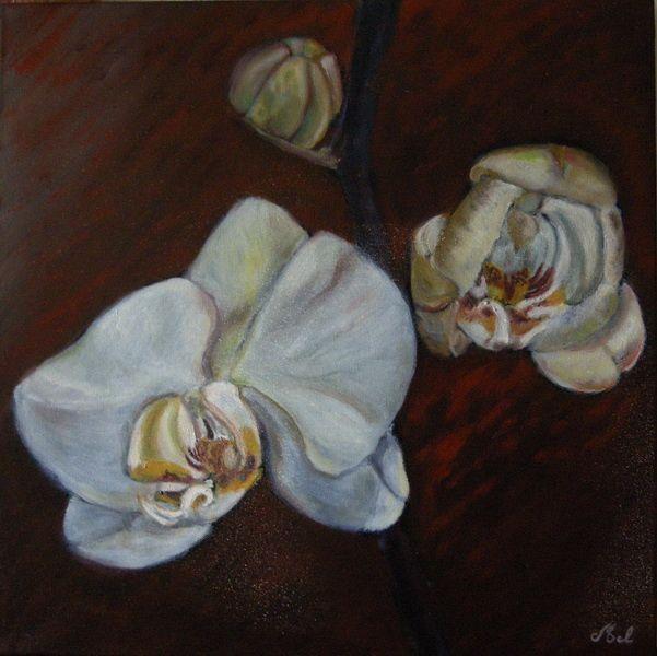 Album - Peintures-de-Claude