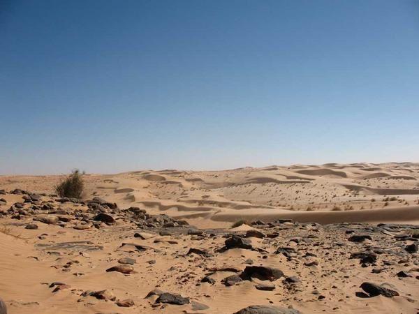 Trek dans le Sahara en février 2007. De Chinguetti à Tergit.