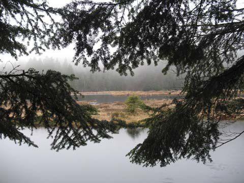 Superficie de 76 ha, long de 1.950 m et 550 m de large.  Ensérré par des montagnes boisées et abruptes.  Présence de tourbières flottantes dans le lac.