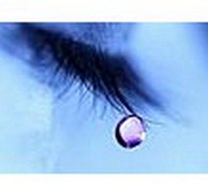 Album - bleu