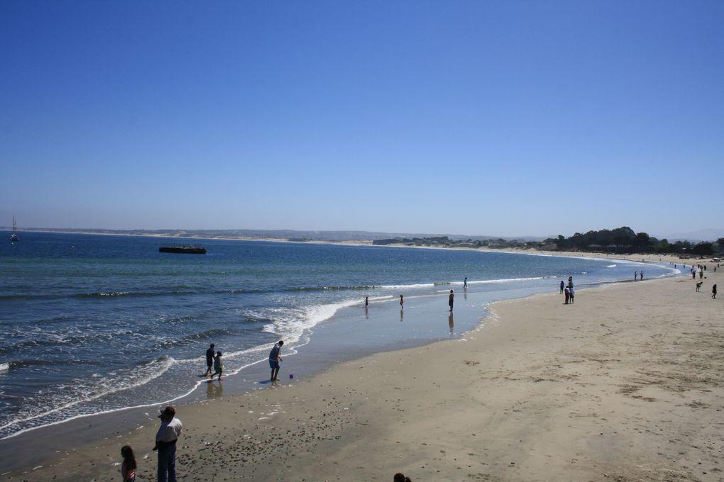 Album - Californie