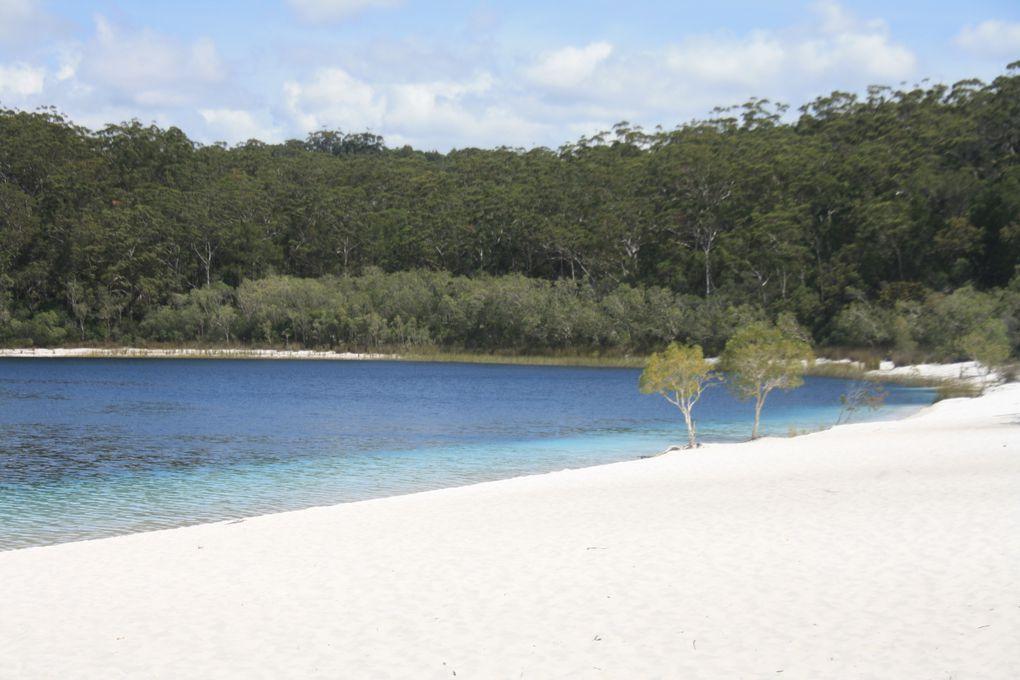 Album - Fraser-Island