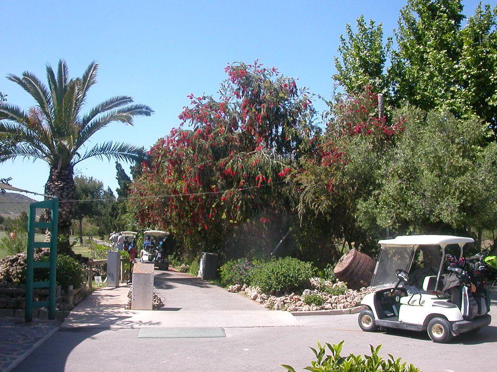 Album - Golf : El Plantio