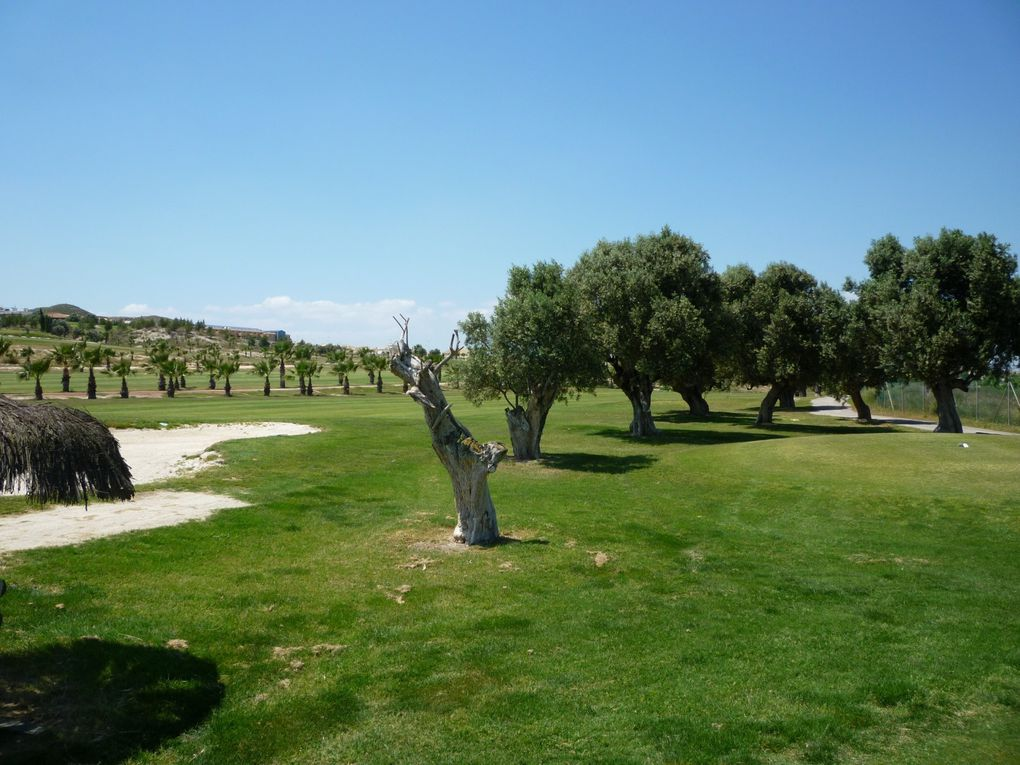 Album - Golf : Sensol-Mazarron