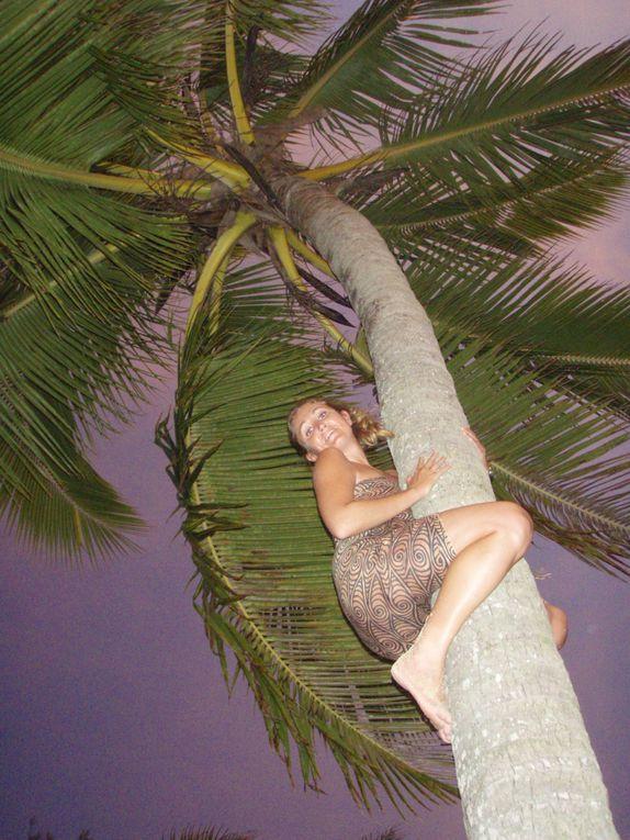 Album - 8-RAROTONGA (Iles Cook)