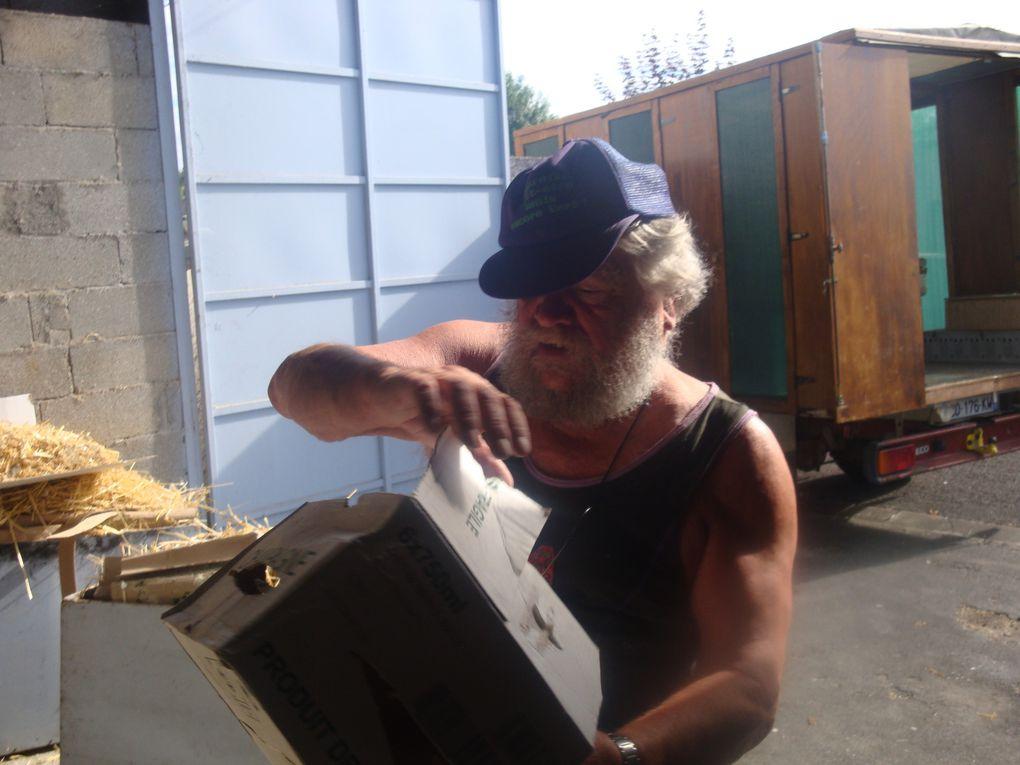 Un peu de rangement dans le local Tous les colmbophiles du pigeon jarnacais sont là. Il faut faire de la place pour rentrer la remorque et le camion  .   dure!dure! beaucoup de questions se sont posées  pour loger les vehicules.....Une fois tout