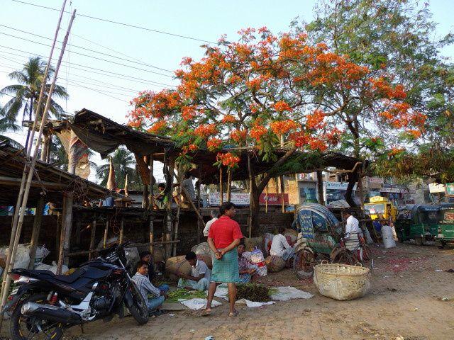 Album - Bangladesh-Chittagong-2013-01