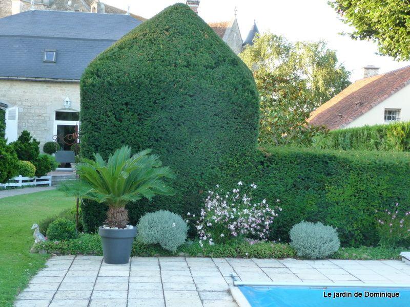 Album - Promenade-au-jardin-du-presbytere
