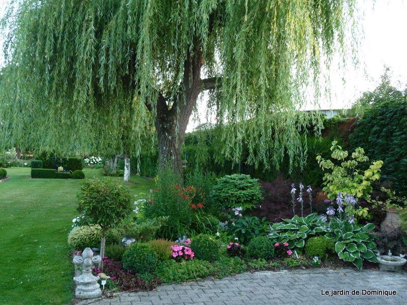 Album - Scenes-de-mon-jardin