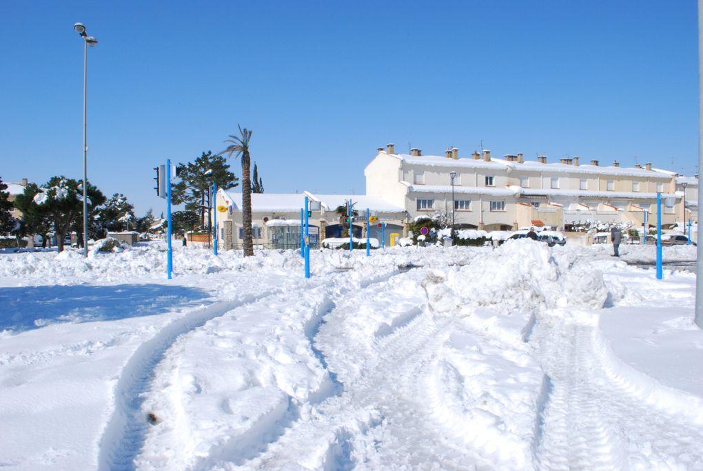 Un lendemain de soleil sur un tapis de neige