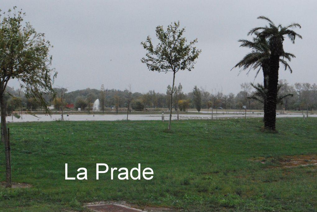Photos prises le 11 10 2010 après alerte orange sur le week end