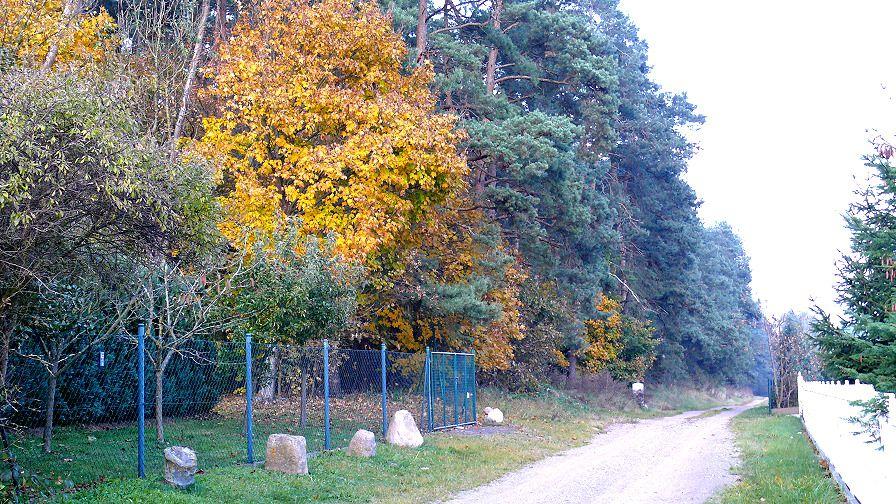 Unser Tanneneck am Waldrand in einem kleinen Dorf in Ostvorpommern.