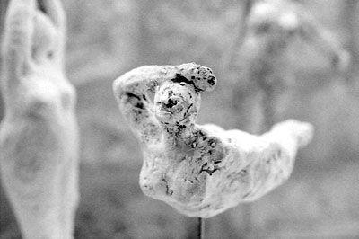Puissent ces quelques images tirées d'une série de photographies argentiques – couleur et noir et blanc – prises cet été à Sarlat donner une idée de la douceur apaisante que j'ai sentie sourdre des sculptures de Veerle Van Gorp…
