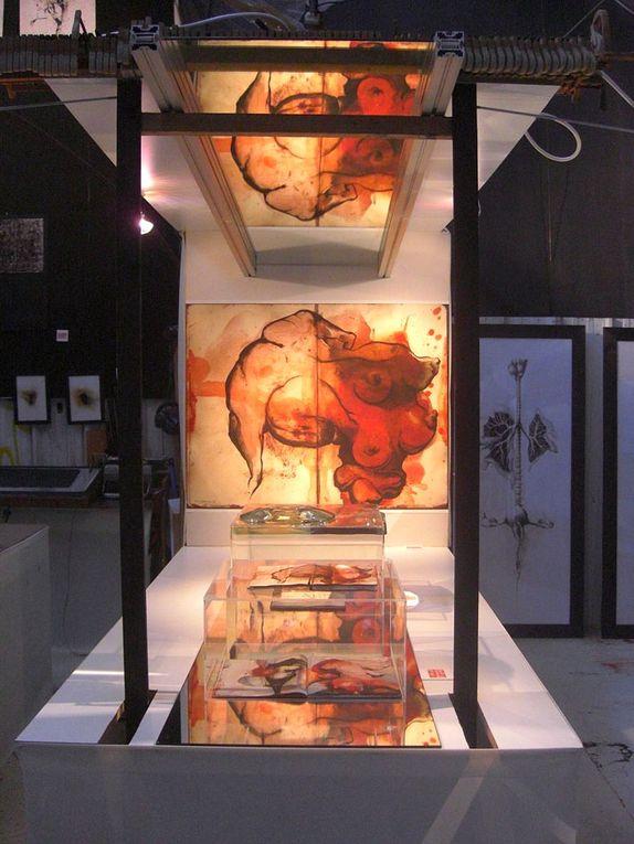 Photos de mon installation, exposition In CarnéS, Friche RVI, Lyon, avec Nicolas Hessman et Marie-véronique Isnard. Juillet 2010.