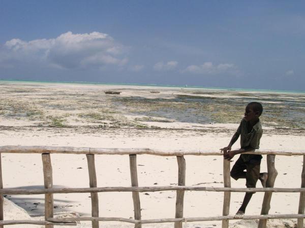 Album - Zanzibar