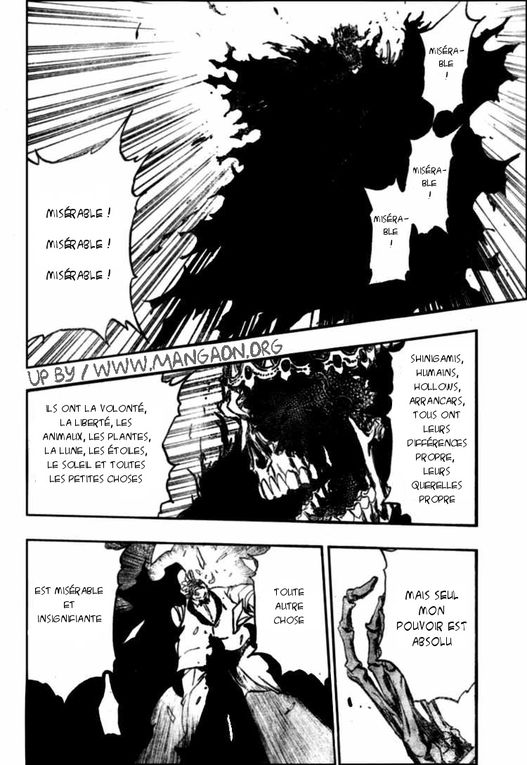 Album - Scan-Bleach-370-fr