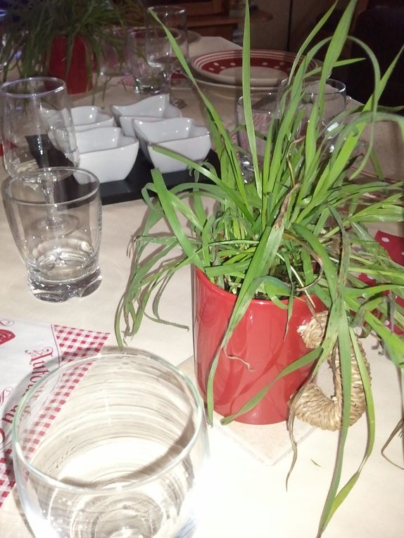 Album - Table-rouge-comme-herbe