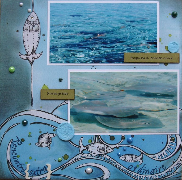 Album - Polynesie-2009