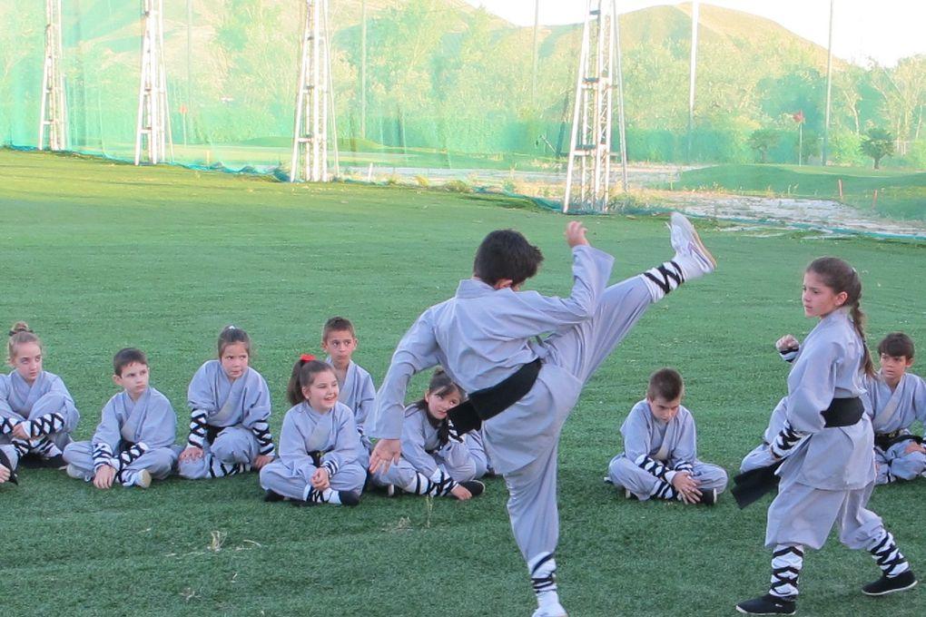 Shifu Senna (Brasileiro), desde 1979, dedicado la Arte Marcial China.Clases de Kung Fu Tradicional Shaolin del Sur, Maestro senna, tiene un programa de entrenamiento que permite a los nuevos aprendices abordar el complejo arte del Kung Fu