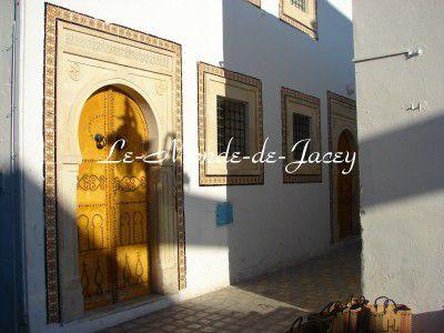 In diesem Fotoalbum gibt es meine Highlight-Fotos aus meinen Tunesien-Urlauben. Die kompletten Fotogalerien findet Ihr auf meiner HP www.le-monde-de-jacey.de
