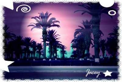 Hallo, in diesem Fotoalbum zeige ich meine gepixelten Tunesienfotos. Gepixelte Fotos von anderen Ländern und Dingen gibt es auf meiner HP.PS: Copyright bei allen Fotos by Jacey
