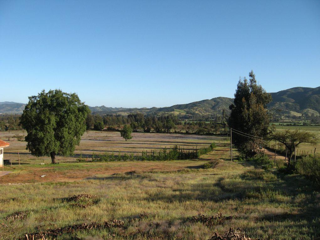 Son fotos que tome en el 2010 en mi amado Pueblo Pumanque donde espero criar a mi amado Alonso junto a mi amada señora.