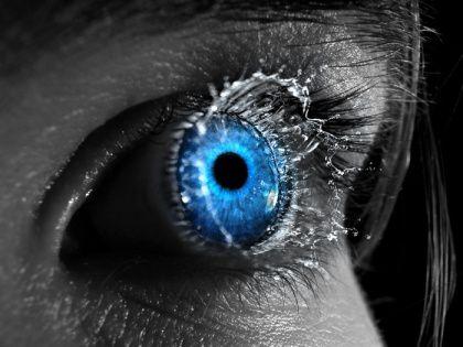 Todos los ojos que se van publicando al final de cada capítulo.