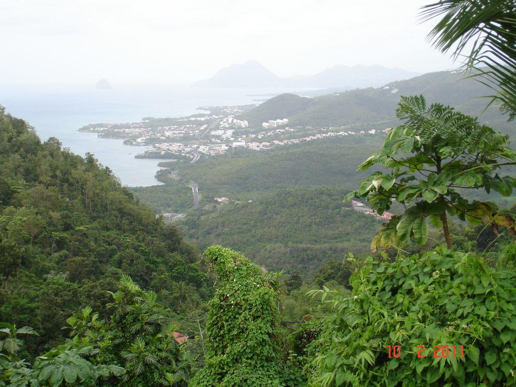 Album - Rencontre-avec-les-Antilles-janvier-fevrier-2011