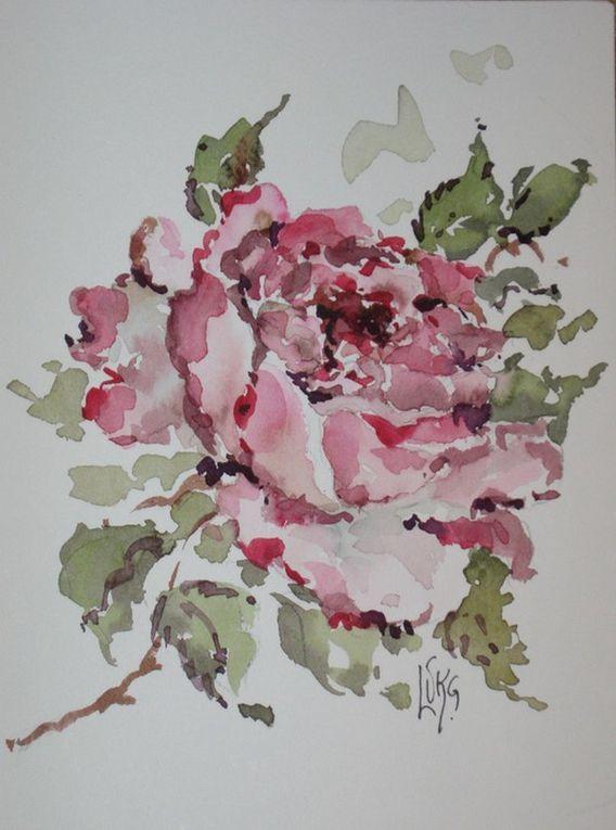Album - watercolours
