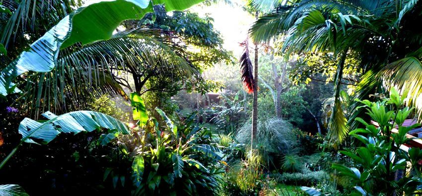 The secret garden of TACACORI EcoLodge