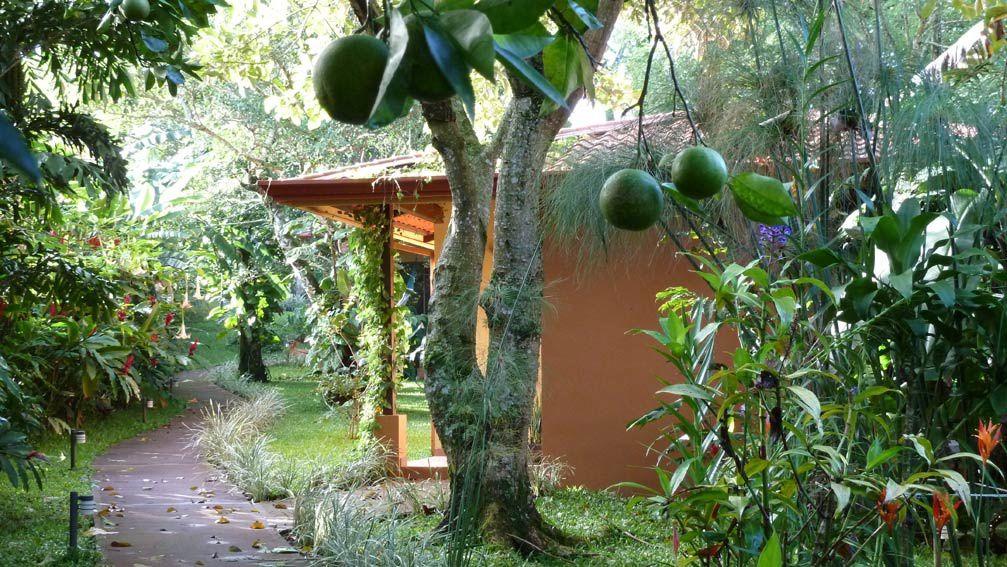 Une note de gaieté et de vitalité aux couleurs épicées...Casita Poró, la pétillante est le jardin d'Eden dont vous rêvez pour un été éternel.