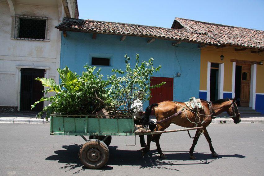 Excursion en bateau Isletas de Granada et visite de la ville coloniale de Granada.