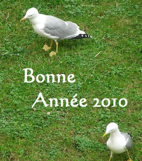 Album - 2009-3